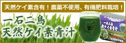ケイ素青汁